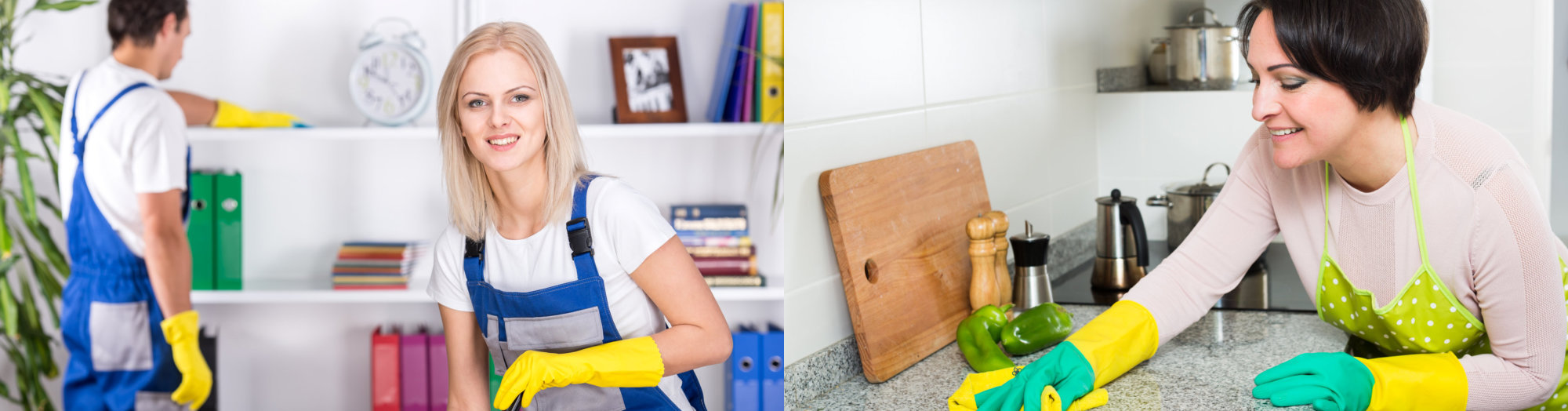 Two Womens Cleaning